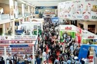 迪拜商业活动增长强劲